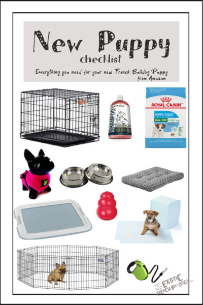 New Puppy Shopping Guide